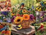 Rosemary's Birds F
