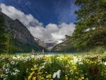 Springtime at Lake Louise, Banff NP