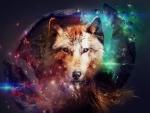 Wolf Abrstract