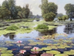 Water~Lily Pond