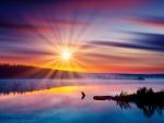 Summer Sunrise at the Lake