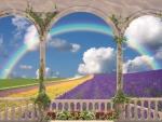 Balcony Rainbow