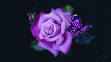 Purple Butterfly And Rose Flowers Nature Background Wallpapers