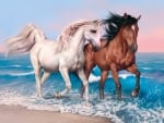 romantic gallop