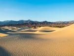 golden dunes by the mountain
