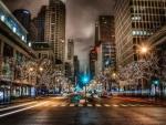 white lit trees on a chicago street