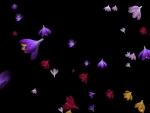 Crocuses floating in the air