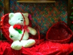 Teddy Bear for Valentine