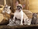 Cute friends
