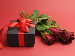 Gift and rose