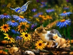 Kitties and Butterfly