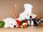 Tired chefs