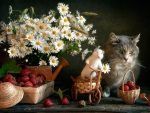 Still life with mouse and cat