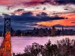 Oakland Bay Bridge F