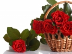 Basket Of Roses For Welcha