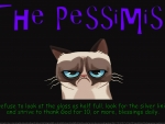The Pessimist 2