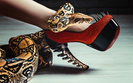 Temptation - red, stiletto, legs, serpent, valentine, woman, shoe, stuff, temptation, reptile, snake