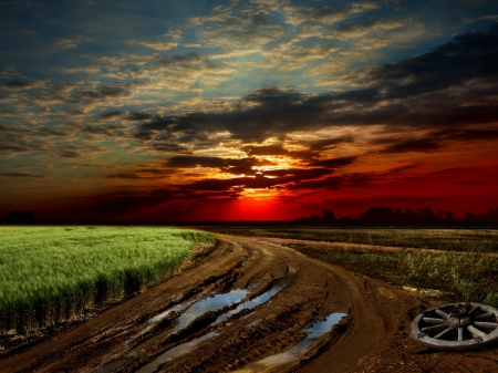 Beautiful  Sunset - grass, cart, nature, sunset, road, clouds, sky