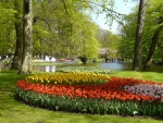 Springtime at Keukenhof, Netherlands