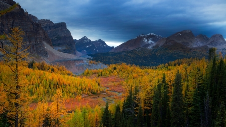 river valley in autumn - forest, autumn, mountains, river, overcast, valley