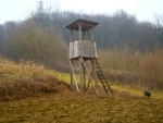 Scouting hunters wooden tower