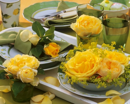 Beautiful Flowers - yellow, plate, flowers, bloom