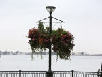 Streetlamp with flowers
