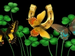 Butterflies and Shamrocks F