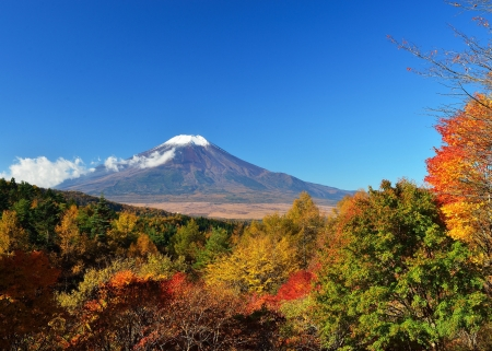 Mount Fuji at Fall, Japan - leaves, colors, trees, volcano, landscape