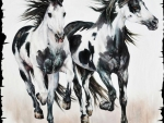 Black and White - Horse