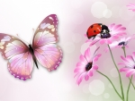 Butterfly and Ladybug