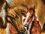 A Mother's Touch - Horses FC