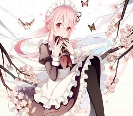 Soft Maid - pretty, beautiful, woman, cherry blossom, sweet, anime, flowers, beauty, anime girl, long hair, pink, female, lovely, black, soft, butterflies, spring, trees, cute, girl, bird, uniform, maid, lady, pink hair, white