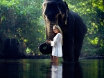 Elephant and the girl