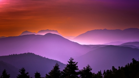 Evening in mountains - foggy, orange, beautiful, sunset, fog, nice, putple, shadows, sunrise, evening, amazing, colors, silhouettes, black, pines, tree, mountains, awesome, violet, nature