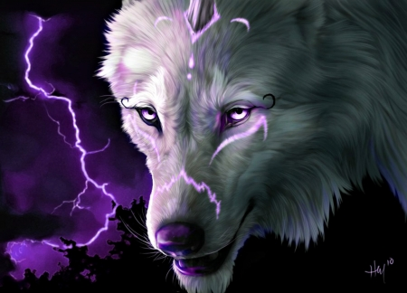 White Wolf With Purple Eyes Thunderbolt - F...