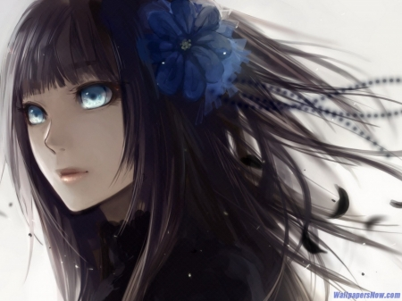 Beautiful Anime Girl - Girl, Beautiful, Black, Anime