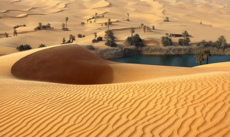 Wonderful Place - beautiful, desert, nature, sand