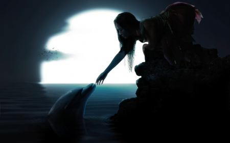 Moonlight Friendship! - nature, dolphin, moon, person