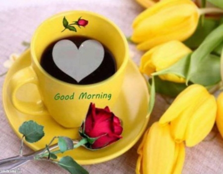 Good Morning Photography Abstract Background Wallpapers On