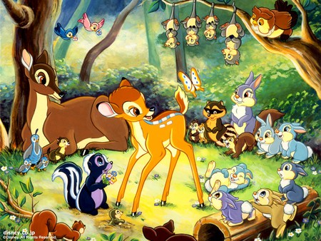Bambi and Friends - forest, owl, possums, racoon, woods, rabbits, skunk