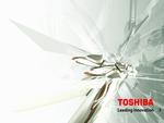Toshiba crystal