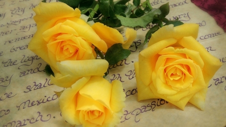 Yellow Roses~Friendship ♥ Joy ♥ Caring - yellow roses, text, words, yellow, paper, roses, letter