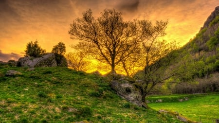 rocky grass covered hill hdr - grass, hill, valley, rocks, sunset, trees, hdr