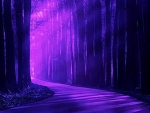 Purple Forest Light