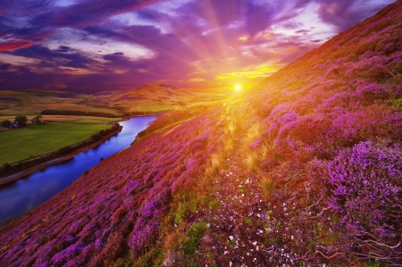 Beautiful sunset - colorful, glow, beautiful, sunset, clouds, valley, mountain, wildflowers, river, pink, amazing, sunlight, sky, rays, purple, slope, sunshine