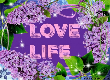Comments On Love Life 3d And Cg Wallpaper Id 2114172 Desktop