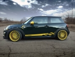 2016 Mini Cooper John Cooper Works F300 by Manhart Racing
