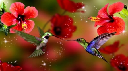 Humming birds and flowers - birds, red, flowers, spring