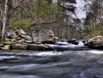 rocky rapids in a forest stream hdr